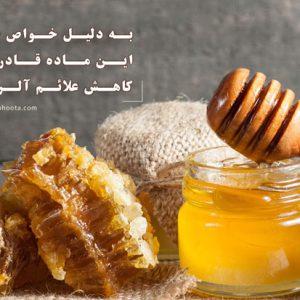 عسل 1